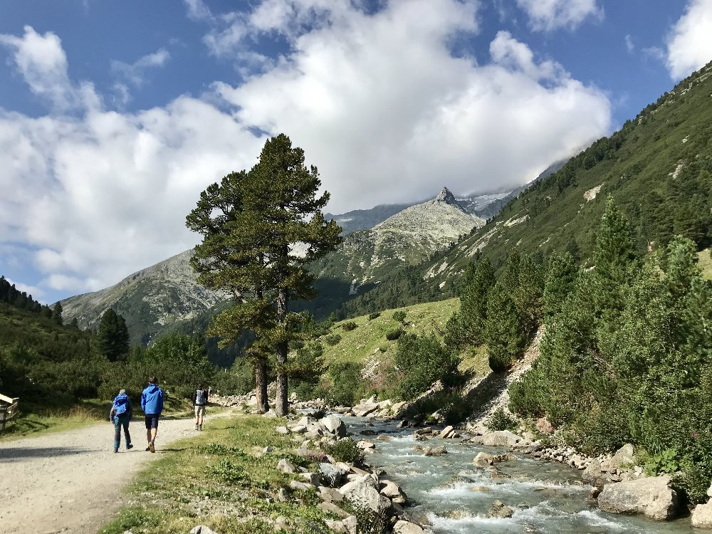 Pfitscher Joch wandern: Ab Zamsgatterl geht´s am schönen Zamser Bach hinauf