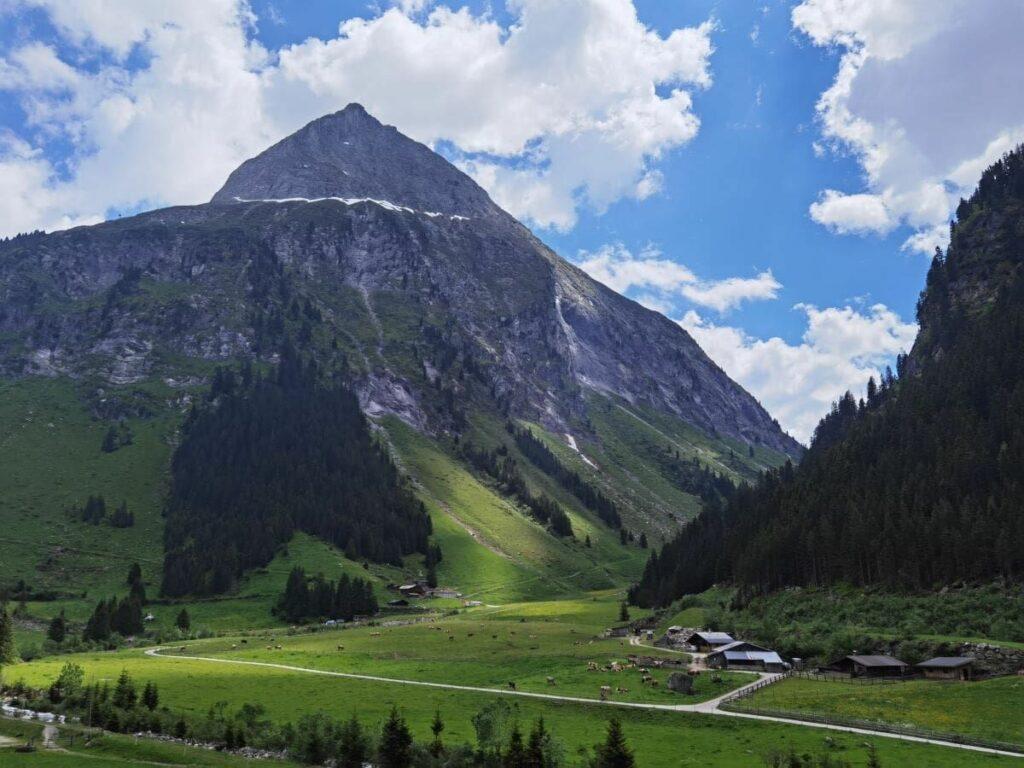 Idyllische Almlandschaft im Zillergrund - überragt von den hohen Bergen der Zillertaler Alpen