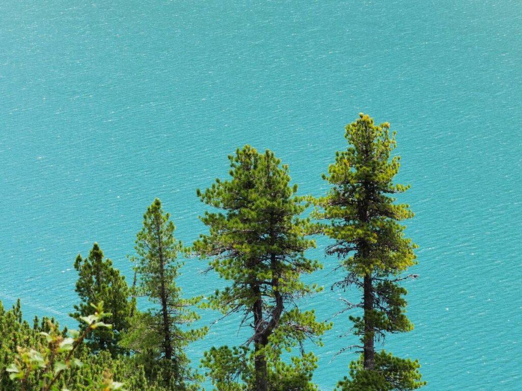 Am Zillergrund Stausee wandern und das türkisgrüne Wasser bewundern
